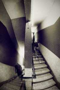 duality___escher_vision_i_by_lxrichbirdsf